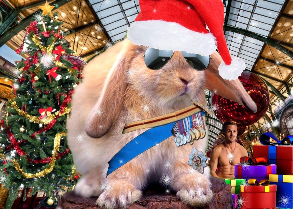 Christmas General Bunny